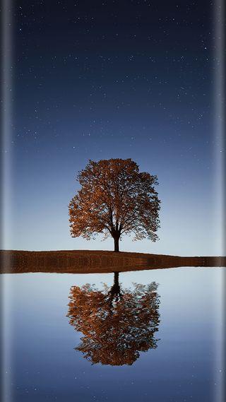Обои на телефон стиль, природа, ночь, небо, красота, звезды, дерево, грани, s7, edge style
