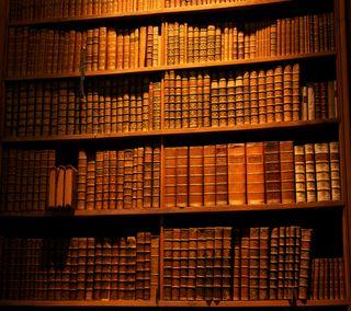 Обои на телефон книга, library