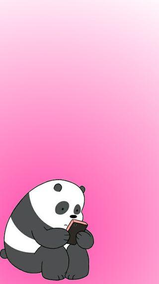 Обои на телефон сеть, панда, мультфильмы, милые, медведи