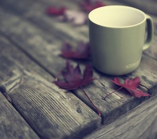 Обои на телефон чашка, симпатичные, одиночество, милые, листья, кофе, moody, maple, cup