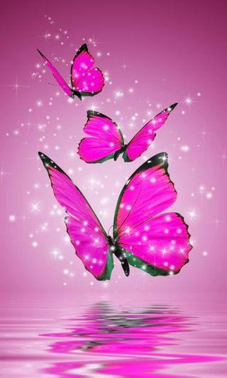 Обои на телефон яркие, розовые, новый, крутые, животные, дизайн, блестящие, бабочки