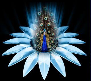 Обои на телефон павлин, цветы, прекрасные, кристалл, crystal flower