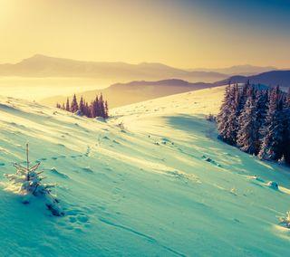 Обои на телефон снег, зима, природа, пейзаж, закат, горы
