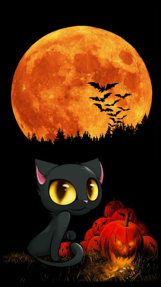 Обои на телефон хэллоуин, темные, счастливые, праздник, кошки, котята, happy halloween 02, happy