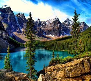Обои на телефон озеро, ель, дерево, горы, moraine