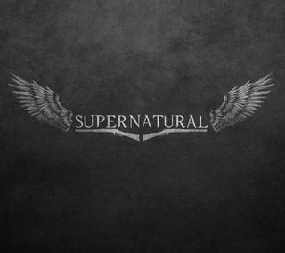 Обои на телефон сверхъестественное, логотипы, крылья