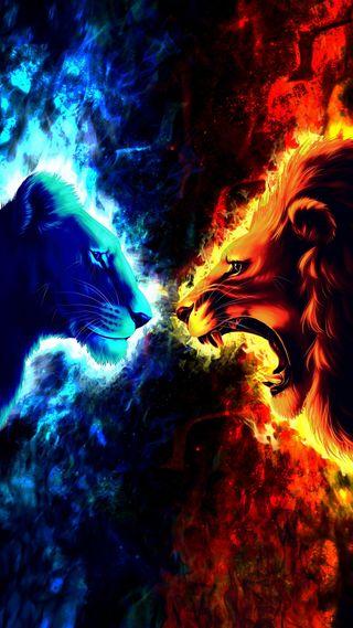 Обои на телефон холод, дикие, огонь, лицо, лед, лев, животные, гореть, fire and ice, face to face, 3д, 3d