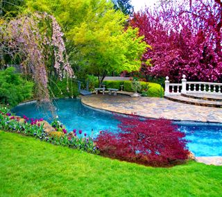 Обои на телефон красота, цветные, фон, природа, мост, зеленые, nature colors