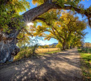 Обои на телефон солнце, дорога, долина, деревья, аризона, америка