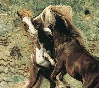 Обои на телефон лошади, прекрасные