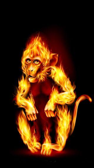 Обои на телефон зодиак, символ, рождество, пламя, огонь, обезьяны, гореть, год, 2016