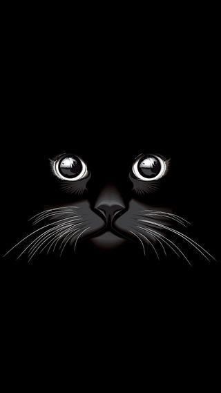 Обои на телефон кошки, глаза