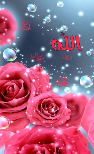 Обои на телефон тема, цветы, приятные, мусульманские, исламские, бог, арабские, аллах, hd