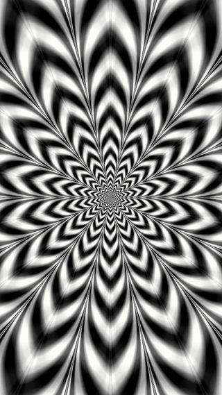 Обои на телефон цветы, черные, иллюзии, дизайн, белые