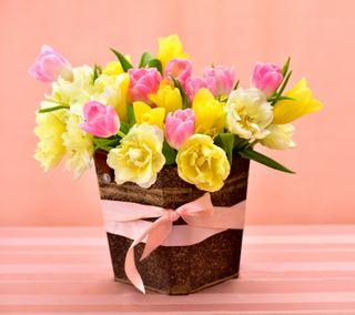 Обои на телефон тюльпаны, цветы, розовые, корзина, букет