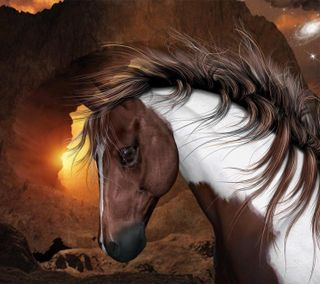 Обои на телефон лошадь