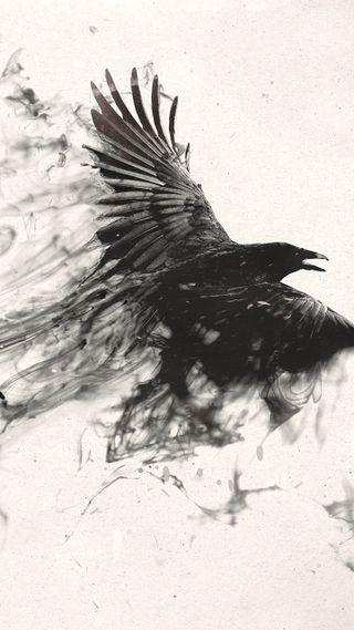 Обои на телефон летать, черные, птицы, дым