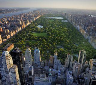 Обои на телефон нью йорк, парк, новый, здания, деревья, вид, ny, central