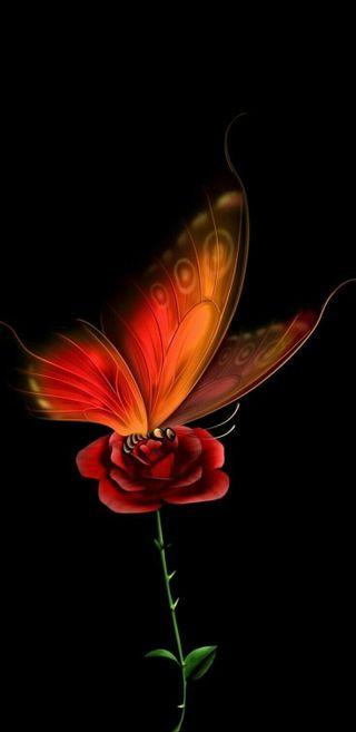 Обои на телефон темы, цифровое, розы, матовые, линии, грибы, бабочки, абстрактные, rose butterfly, hd