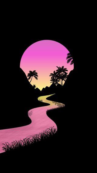 Обои на телефон пальмы, солнце, закат, деревья