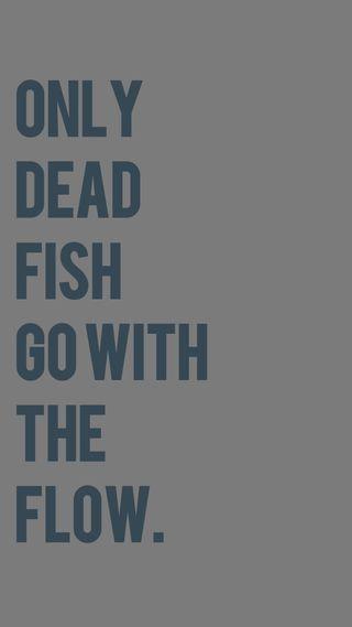 Обои на телефон цитата, только, рыба, поток, поговорка, мертвый, жизнь, go