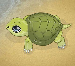 Обои на телефон черепаха, пляж, милые