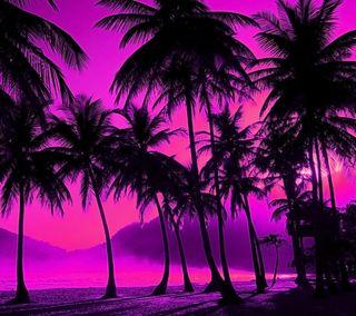 Обои на телефон тень, фиолетовые, силуэт, пляж, пальмы, beach purple