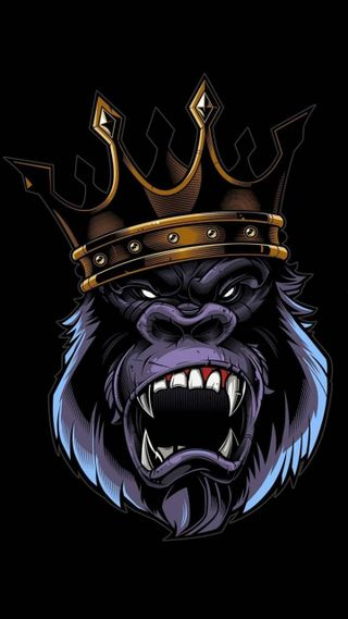 Обои на телефон сильный, король, конг, босс, king kong is strong, king kong is boss, king kong