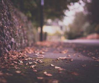 Обои на телефон мечта, sidewalk