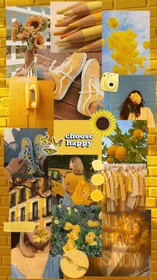 Обои на телефон эстетические, подсолнухи, монтаж, желтые, крутые, девушки