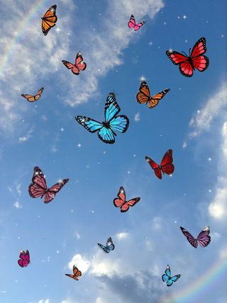 Обои на телефон эстетические, шик, крылья, бабочки, butterfliesbling