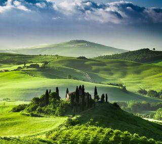 Обои на телефон поле, природа, пейзаж, облака, замок, vineyard