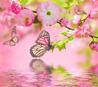 Обои на телефон вишня, цветочные, цвести, прекрасные, вода, бабочки, арт, art