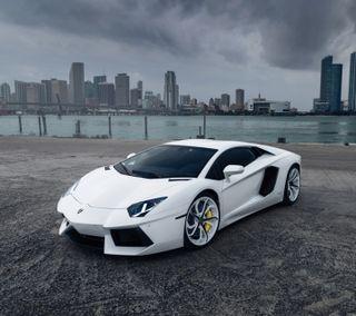 Обои на телефон lamborghini, luxury, крутые, новый, машины, белые, ламборгини, скорость, автомобили, роскошные, классика