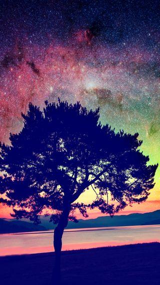 Обои на телефон поле, природа, дерево, галактика, абстрактные, galaxy