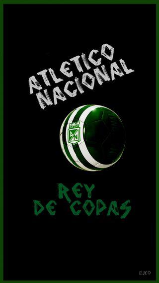 Обои на телефон колумбия, чемпионы, футбольные, спорт, неоновые, логотипы, игра, atletico nacional, atl nacional
