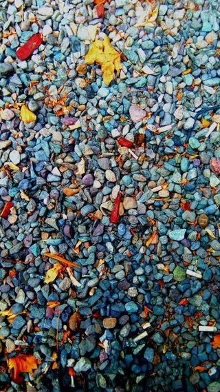 Обои на телефон пол, камни, цветные, природа, suelo, piso