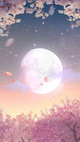 Обои на телефон цвести, лепестки, фантазия, розовые, расцветает, ночь, луна, звезды, деревья, blossom night
