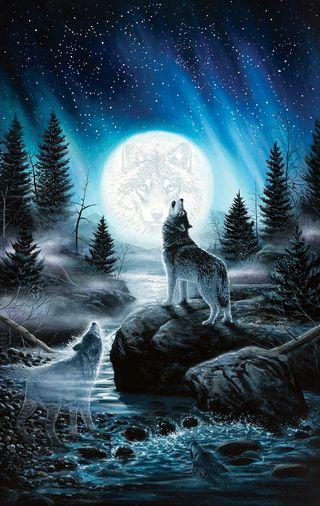 Обои на телефон фантазия, звезды, звезда, волк, star howling wolfs
