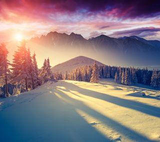 Обои на телефон winter sun, природа, пейзаж, закат, зима, снег, солнце, горы, солнечный свет