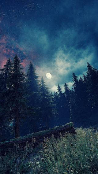 Обои на телефон пс4, небо, луна, лес, звезды, дни, деревья, горы, ps4 share, ps4, photomode, forest moonlight, days gone