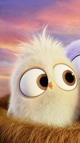 Обои на телефон рисунки, птицы, питомцы, мультфильмы, милые, злые, животные, глаза