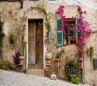 Обои на телефон цветы, фон, старые, приятные, прекрасные, крутые, дом, old house, hd