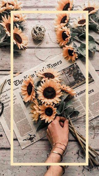 Обои на телефон эстетические, пастельные, желтые, цветы, подсолнухи, yellow flower, sunflower wallpaper, pastel yellow