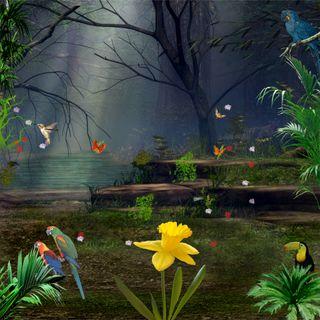 Обои на телефон джунгли, птицы, попугай, листья, лес, деревья, дерево, бабочки, jungle hd