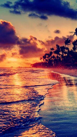 Обои на телефон пальмы, природа, пляж, ночь, море