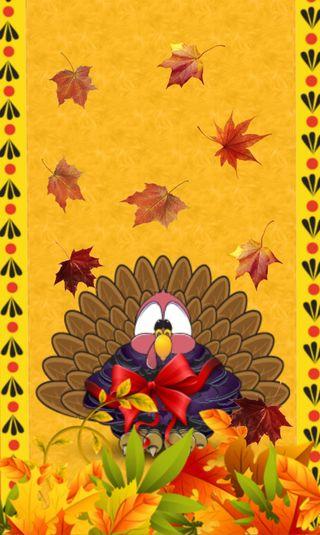 Обои на телефон благодарение, турецкие, счастливые, осень, листья, день, happy turkey day
