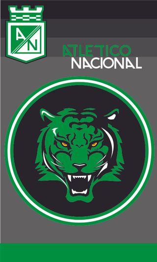 Обои на телефон колумбия, футбол, тигр, зеленые, atletico nacional 5, atletico nacional