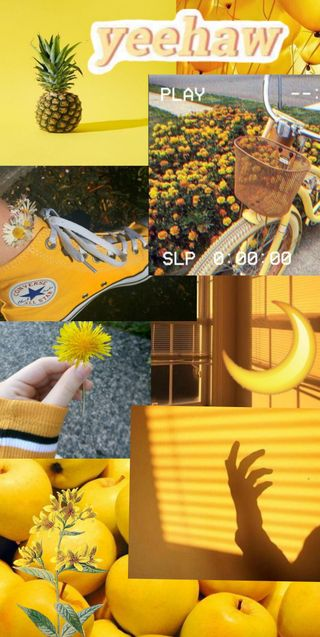 Обои на телефон эстетические, цветы, солнце, симпатичные, желтые, tumblr