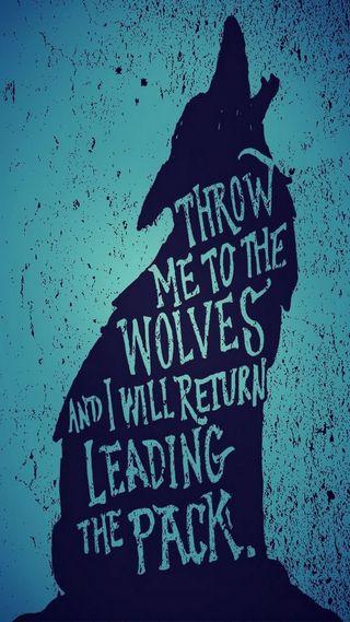 Обои на телефон волк, throw, pack, lead